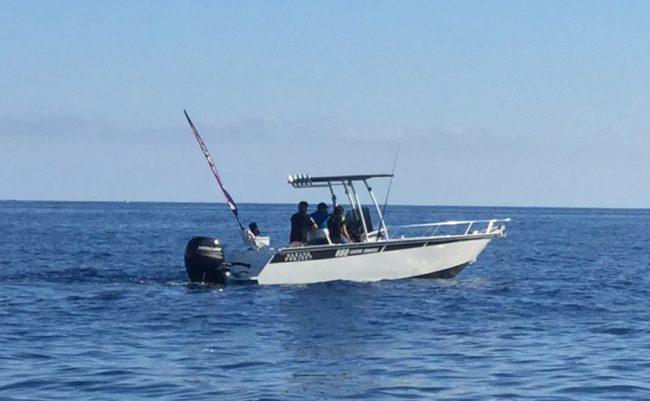 Marine Project 660